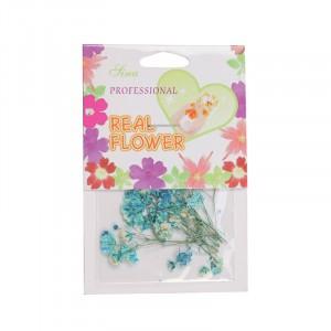 Décoration d'ongles Fleurs bleues